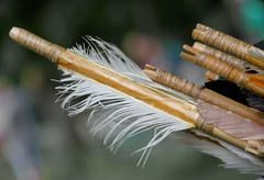feathers for the stabilization of the wooden hunting arrow and bird feathers - stock photo