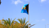 Stock Video Footage of Bahamas Flag
