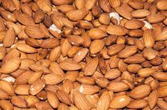 fruit almonds or prunus dulcis - stock photo