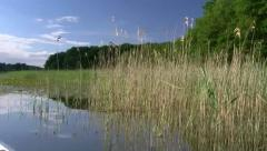 Lake Müritz - Mecklenburg-Vorpommern Stock Footage