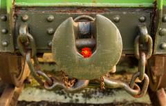 marigold linkage - stock photo