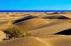 Stock Photo of natural reserve of dunes of maspalomas, in gran canaria, spain