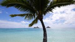 Mokulua islands, lanikai, kailua, oahu, hawaii. Stock Footage