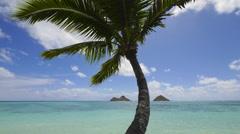 Timelapse, mokulua islands, lanikai, oahu, hawaii. Stock Footage