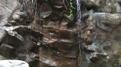 Waterfall running over rocks, through tree roots in this tranquil scene Stock Footage