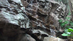 Waterfall running over rocks, through tree roots, accompanied by green foliage Stock Footage