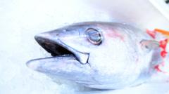 Japanese Fishing Industry Economy Tsukiji Fish Market Tokyo Japan Seafood Ice - stock footage