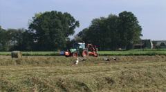 A tractor with bale slicer attachment moves across hayfield, storks foraging Stock Footage