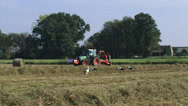 Stock Video Footage of A tractor with bale slicer attachment moves across hayfield, storks foraging