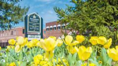 Historic Hendersonville Signage with Yellow Tulips in Spring Stock Footage