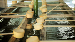 Meiji Jingu Shrine Yoyogi Park Japanese hand washing Tokyo - stock footage