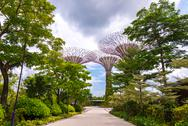 Stock Photo of walking path gardens by the bay