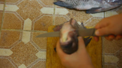 male hands purified from fish guts and washed in water pressure. Time lapse - stock footage