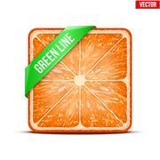 Stock Illustration of square slice of grapefruit green line. vector illustration.