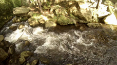 4k rough water of a rocky stream Harz nature reserve Stock Footage