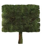 Wooden sign covered in moss isolated on white Stock Illustration