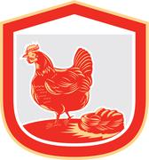 hen chicken nest egg shield retro - stock illustration