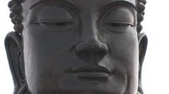 Head of a Big Buddha Statue Stock Footage