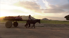 Ethiopia - Rural Road - Man leading donkey cart - stock footage