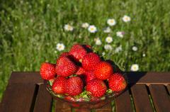 Strawberries with daises in background Stock Photos