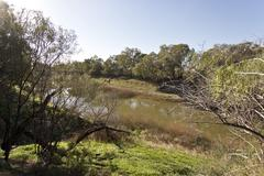 Darling River at Wilcania - stock photo
