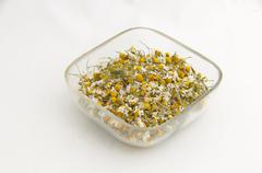 Stock Photo of Ecological medicative dry herb flower - camomile