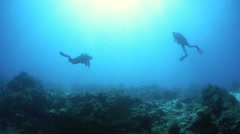 Scuba divers drift diving with current underwater - stock footage