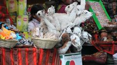 La Paz witches market llama fetus Stock Footage