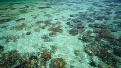 Crystal clear water Stock Footage