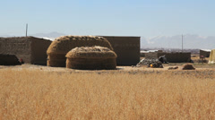 Bolivia Altiplano hay stack c Stock Footage