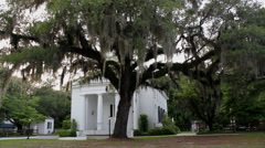 Oak tree spanish moss in front historic church Stock Footage