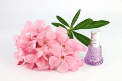 Stock Photo of bouquet of light pink flowers and violet perfume bottles.
