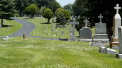 Cemetery and paved driving path - stock footage
