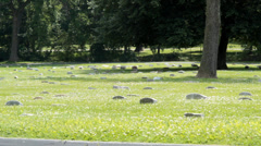 Cemetery grave markers Stock Footage