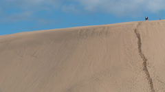Couple climb to the top of a giant sand dune Stock Footage