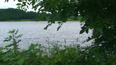 Loch framed by branches and plants shaken by wind Stock Footage