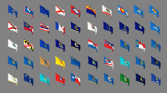 Flags of the 50 US states Stock Footage