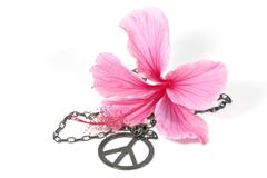 pink hibiscus flower with silver peace pendant - stock photo