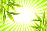 Stock Illustration of bamboo plant over abstract green background