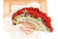 Beautiful bride with a luxury boquet of red roses. isolated on white backgrou Stock Photos