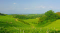 Summer landscape, green hills of Tuscany, Italy, time-lapse. Footage