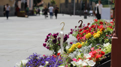 People and Flowers Street View Stock Footage