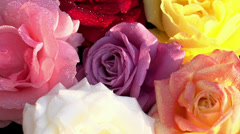 Bouquet of Roses Stock Footage