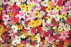Lot of flowers Stock Photos