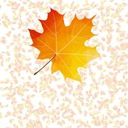 Autumn leaf abstract backgrounds. plus EPS10 Stock Illustration