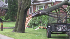 Tree on house after severe thunderstorm causes damage. - stock footage
