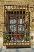 flowerpots window - stock photo
