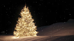 Holiday scene with tree and looping snow Stock Footage
