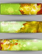 Autumnal leaf background, vector illustration Stock Illustration