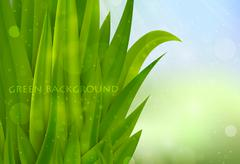 Background of green grass Stock Illustration